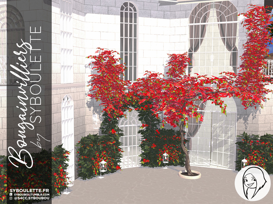 Bougainvilliers set preview4